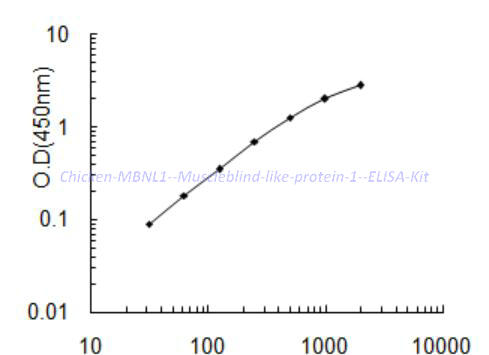 Chicken MBNL1 (Muscleblind- like protein 1) ELISA Kit