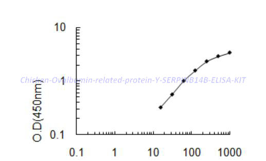 Chicken Ovalbumin- related protein Y, SERPINB14B ELISA KIT