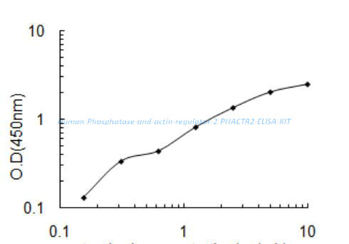 Human Phosphatase and actin regulator 2, PHACTR2 ELISA KIT