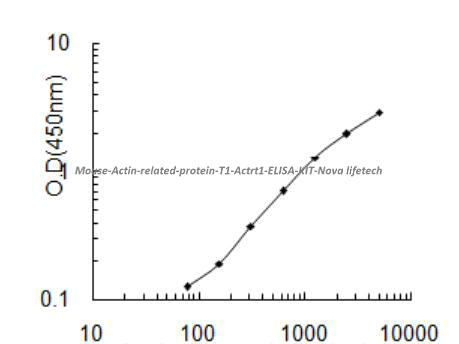 Mouse Actin- related protein T1, Actrt1 ELISA KIT